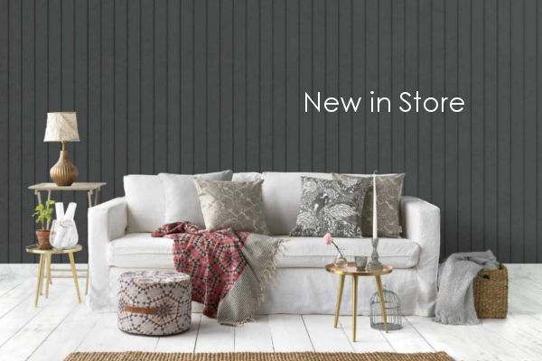 designer-allboards-new-in-store